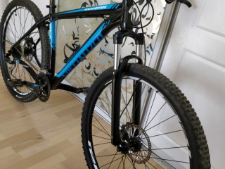 Specialized Rockchopper L 29er 2013