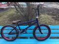 BMX WTP Trust Custom