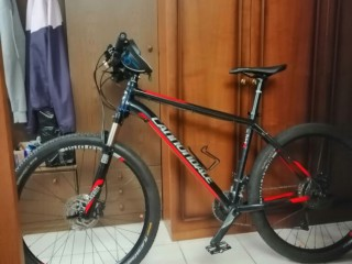 Cannondale Trail 2 L