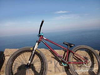 Mutant Bike 26 Custom