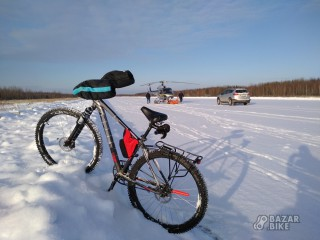 Custom Bike 29+