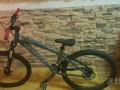 Kona Shred S 2008